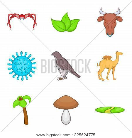 Certainly Icons Set. Cartoon Set Of 9 Certainly Vector Icons For Web Isolated On White Background