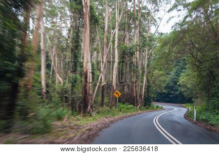 Winding Road In The Forest, Motion Blur, High Speed Motion Effect