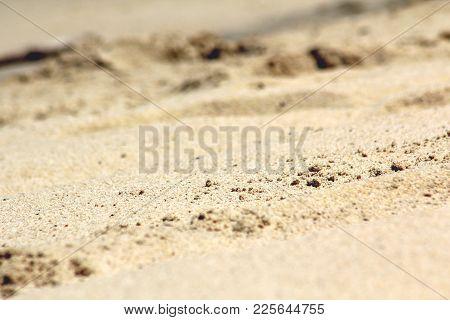 Closeup Beach Sand Background. Beach In The Tropics.