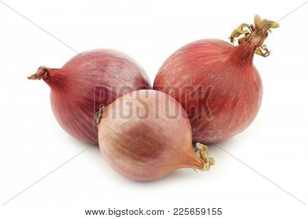 Three pink onions on a white background