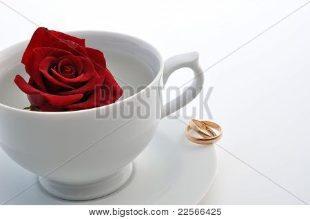 Rose In The Cup And Rings