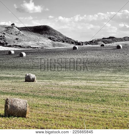 Landscape Of Sicily With Many Hay Bales, Retro Image Filtered Style