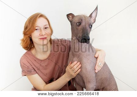 A Woman With A Mexican Hairless Dog That Gives The Paw