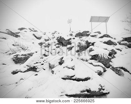 Brash Hillside. Extreme Terrain With Fresh Powder Snow, Path Hidden In Heavy Fog. Misty Winter Day