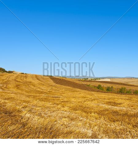 Stubble Fields On The Hills Of Tuscany. Tuscany Landscape After Harvest.