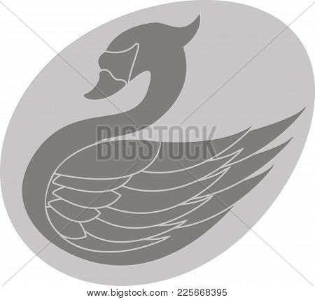 Swan In The Egg. Stencil Of Swan. Vector Illustration