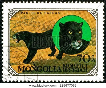 Ukraine - Circa 2018: A Postage Stamp Printed In Mongolia Show Leopard Or Panthera Pardus. Series: W