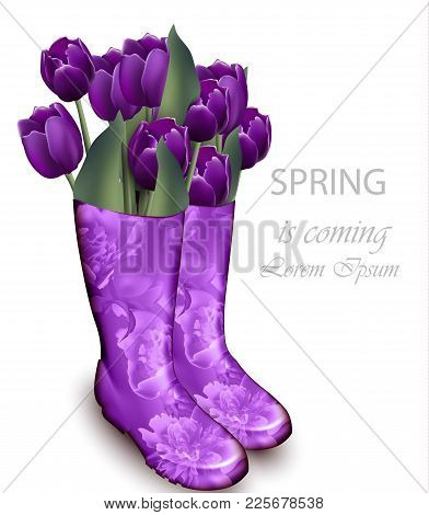 Spring Background With Tulip Flowers Violet Color And Floral Boots. Vector Realistic Illustration