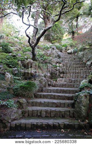 Brick Stone Stairway Ascending Through Trees And Foliage