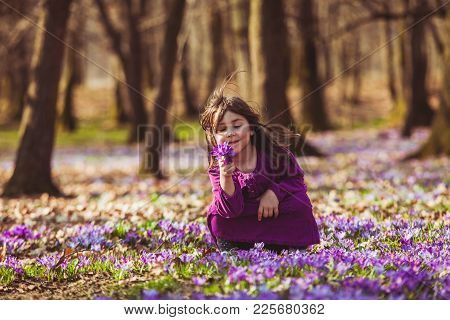 Little Girl Enjoy The Sun, She Is Gathering The Flowers, Inspired By Blossom Meadow Of Saffrons