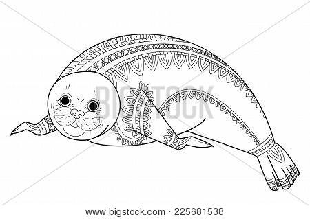 Cute Seal Zentangle Vector Illustration Phoca Zen Tangle Wild Animals Of Antarctica Coloring Book