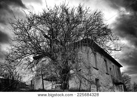 Haunted Scene House. An Old  Vintage  House With Creepy  Tree Against An Apocalyptic Dark Sky For Ha