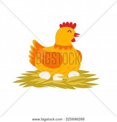Orange Cute Hen Is Laying Eggs On The Nest. Cartoon Hen Vector Flat Illustration Isolated On White B
