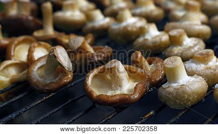 White Champignon Common Mushrooms And Black Chinese Shiitake Mushrooms Cooked On Char Grill, Close U