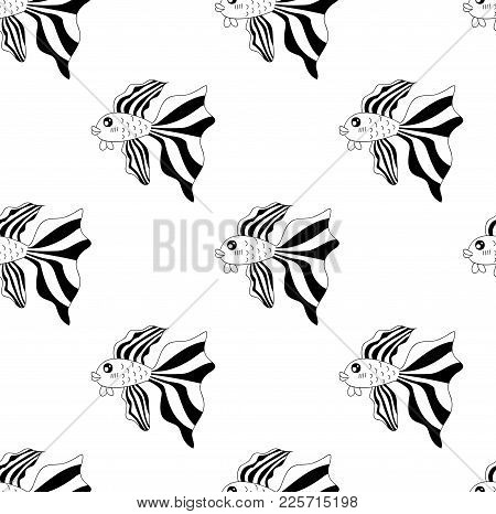 Siamese Fighting Fish On White Background. Vector Illustration.
