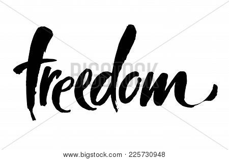 Freedom Handwritten Inscription. Hand Drawn Lettering. Modern Brush Calligraphy. Freedom Card. Vecto
