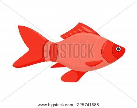 A Colored Flat Vector Icon Of A Fish. Isolated On White Background River Fish Cartoon. Bright Marine