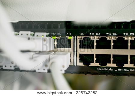 Network Cables In Network Server And Connections On Switch
