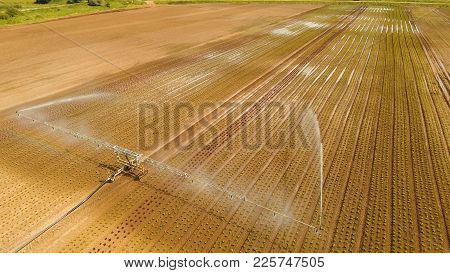 Aerial View: Crop Irrigation Using The Center Pivot Sprinkler System. An Irrigation Pivot Watering S