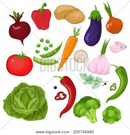 Realistic Vegetables. Potatoes, Tomatoes, Green Onions, Peppers, Carrots And Peas. Set Of Isolated C