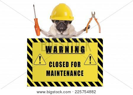 Pug Dog With Constructor Safety Helmet Holding Pliers And Screwdriver With Yellow Warning Sign Sayin