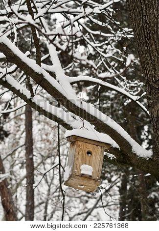 Bird House For The Feeding Of Birds