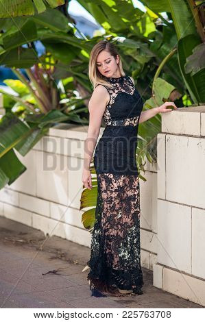 Evening Gown In Black Lace Worn By Slender Woman As She Looks Down Over Shoulder Under The Palm Tree