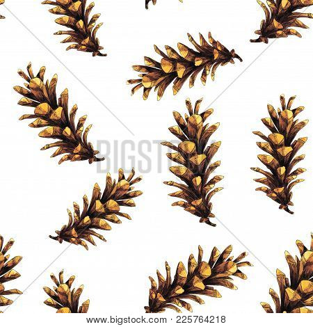 Watercolor Seamless Pattern With Pine Cones Will Be Good For Gift Wrapping, Boxes Design, Site And G