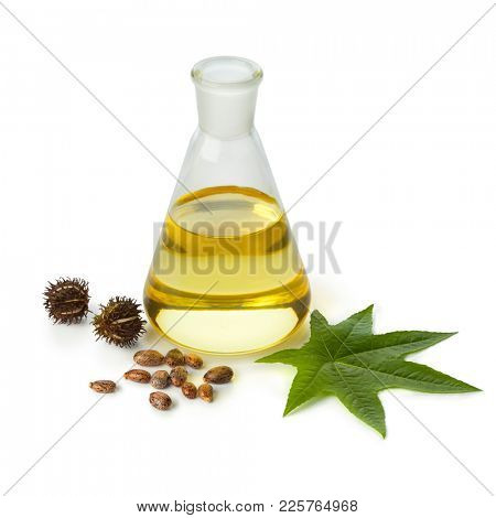 Botlle castor oil with fruit, seeds and leaf isolated on white background