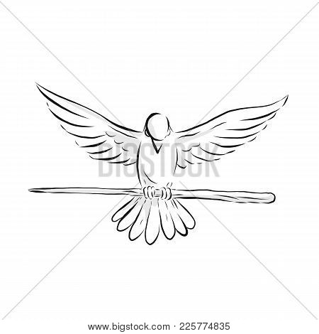 Drawing Sketch Style Illustration Of A Soaring Dove Or Pigeon With Wing Spread Clutching A Wooden St