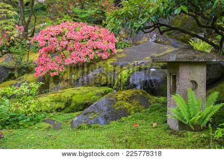 Detail Of A Japanese Garden With Stone Lantern, Azalea, Fern, And Moss.