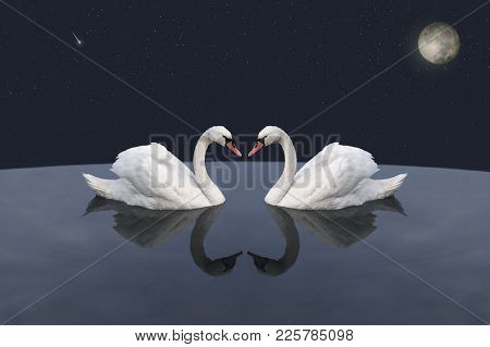 A Pair Of White Swans In Cosmic Lake. Love Against The Background Of The Moon And The Falling Star.