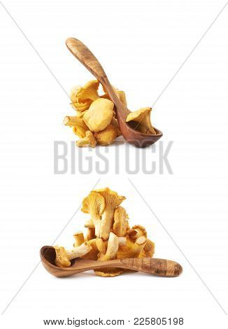 Yellow Chanterelle Mushroom And Wooden Serving Spoon, Composition Isolated Over The White Background