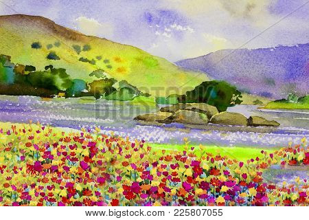 Watercolor Landscape Original Painting Colorful Of Daisy Flowers River And Mountain Forest With Sky