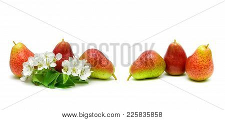 Flowers And Ripe Pear Fruit On White Background. Horizontal Photo.