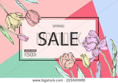 Spring Sale Background With Hand Drawing Of Spring Flowers- Tulips. Vector Illustration.