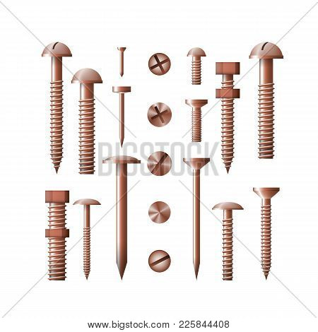 Set Of Copper Fasteners Vector Illustration. The Group Symbol For The Workshop. Screw, Bolt, Nut And