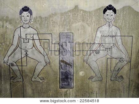 Historic Thai Anatomy  Painting