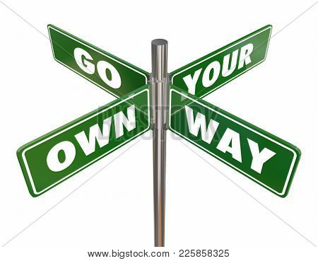 Go Your Own Way Road Street Signs Independence 3d Illustration