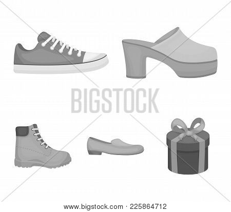 Flip-flops, Clogs On A High Platform And Heel, Green Sneakers With Laces, Female Gray Ballet Flats,