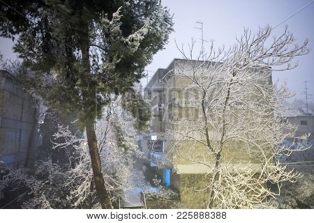 Jerusalem Neighborhood And Forest After A Snow Storm