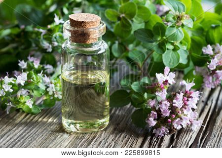 A Bottle Of Oregano Essential Oil With Fresh Blooming Oregano Twigs On A Wooden Background