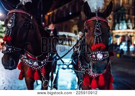The Old Square Of The Night Krakow With Horse-drawn Carriages