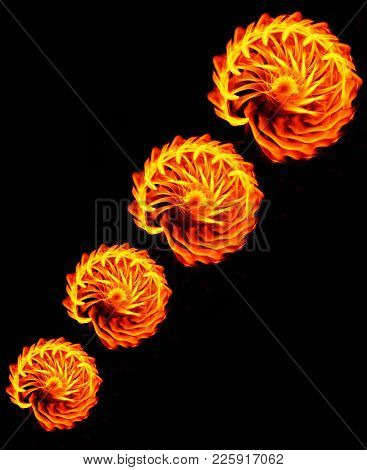 Abstract Fire Flames. Fire Flower. Fire Flames On Black Background For Design