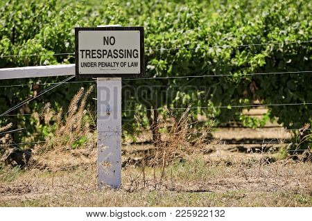 No Trespassing Sign On The Property Line Of A Large Vineyard