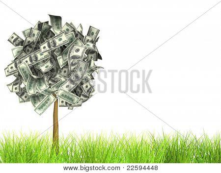 Árbol del dinero. Aislado en blanco
