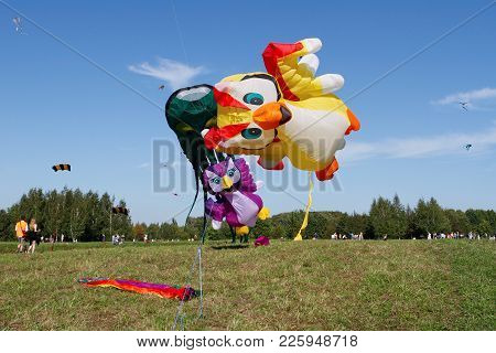 Moscow, Russia - August 27, 2016: Owls And Octopus Kites At The Kite Festival In The Park Tsaritsyno