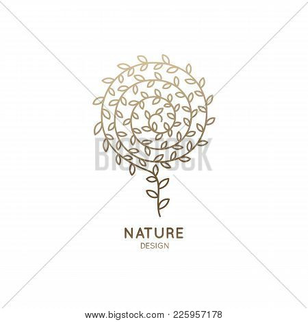 Vector Logo Of Floral Element. Round Flower Outline Icon. Linear Emblem For Design Of Natural Produc