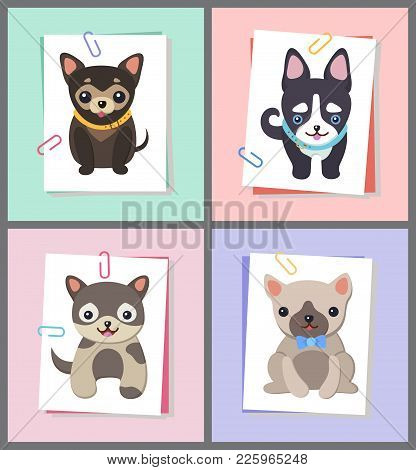Dogs With Good Mood, Collection Of Puppies With Collars And Pug Wearing Bow Tie On Neck, Symbols Of
