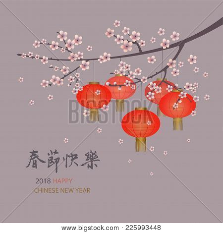 2018 Chinese New Year Greeting Card With  Sakura Branches And Red Lanterns On A Warm Grey Background